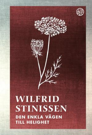 Den enkla vägen till helighet - Wilfrid Stinissen - NYUTGÅVA